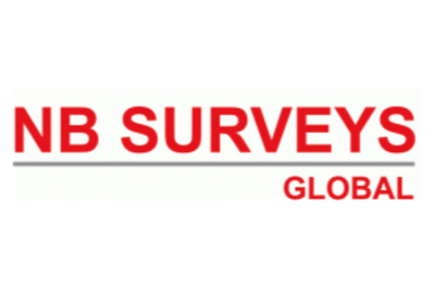 NB Surveys
